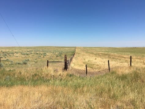 GML thinks this Wyoming fence is a road