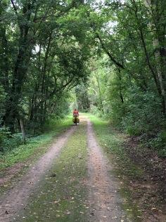 Lovely bike trails