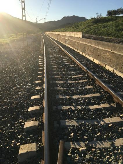 Ride *on* train tracks?!