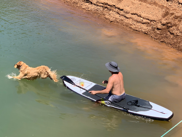 Luna jumping off Mick's paddleboard